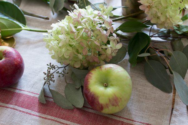 Apples and Hydrangeas