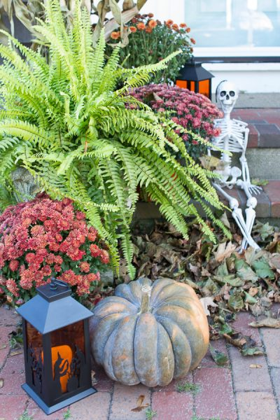 Ferns, Mumms, Pumpkins and Skeletons - Perfect for Halloween I Finding Silver Pennies