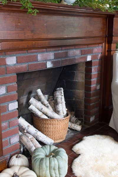 Birch Logs in the Fireplace