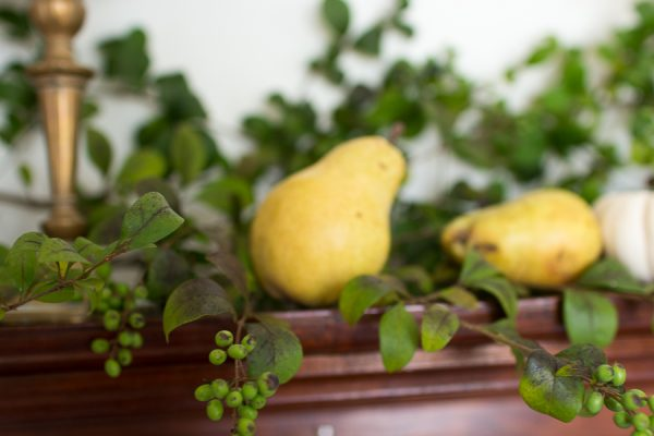 Autumn Mantel of Pears and Privet