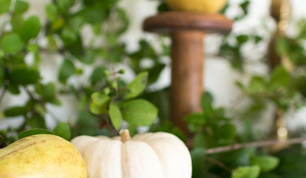 Pear and Privet Mantel