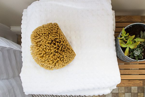 Sea Sponges and Egyptian Cotton are Lovely Additions to a Bathroom I Finding Silver Pennies