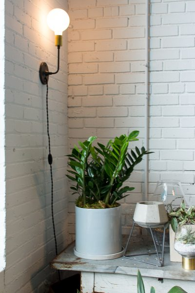 Succulents, Vintage Galvanized Table, Painted Brick Wall I Finding Silver Pennies