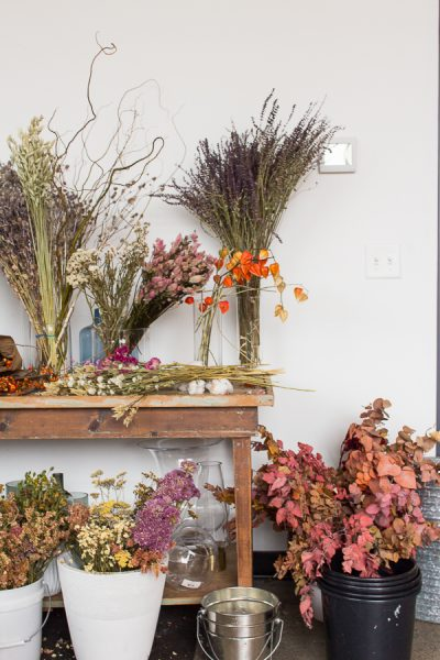 Flower Workshop with lots of beautiful blooms I Finding Silver Pennies