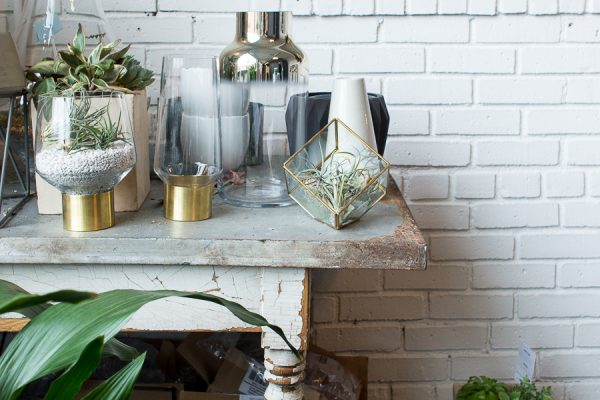 Succulents, Vintage Galvanized Table and Painted Brick Wall I Finding Silver Pennies
