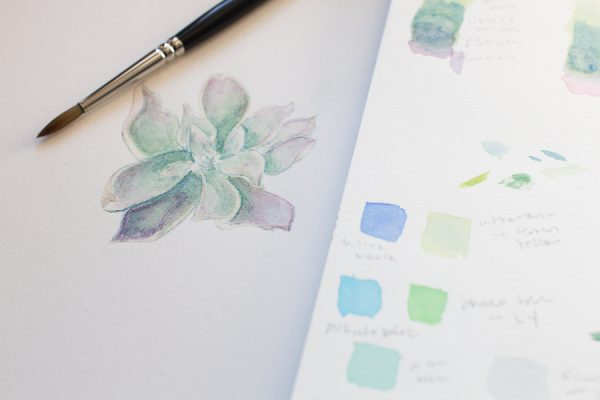 Painting a Watercolor Succulent I Finding Silver Pennies