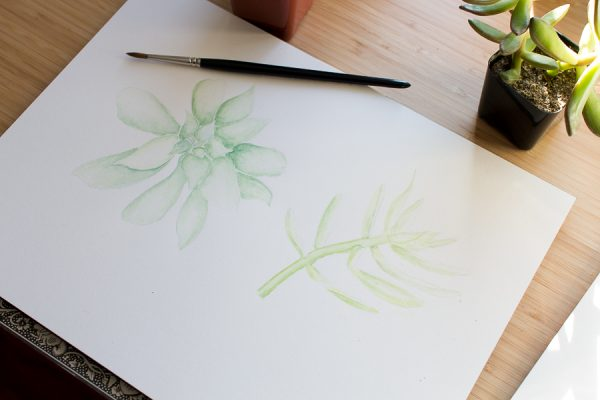 Watercolor Succulents in Progress I Finding Silver Pennies