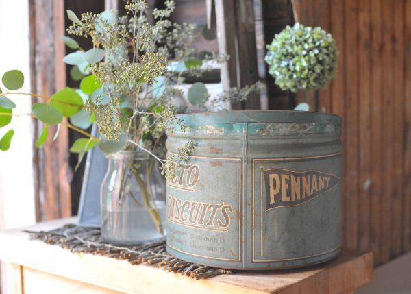 Simple Vignette - vintage tin, eucalyptus I Finding Silver Pennies