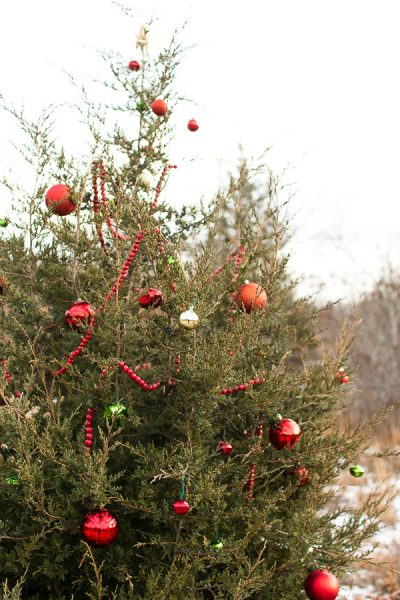 Merry Christmas from Scituate! - Finding Silver Pennies
