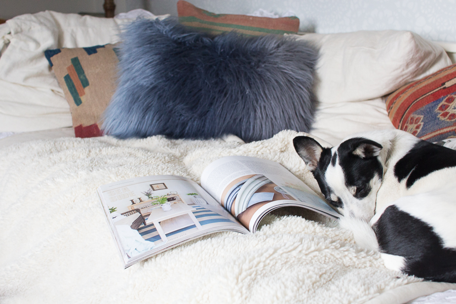 Max Curled Up with the Spring Issue of Where Women Create - Finding Silver Pennies