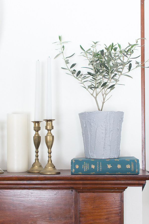 A Potted Olive Plant Adds Sophistication to A Mantel I Finding Silver Pennies