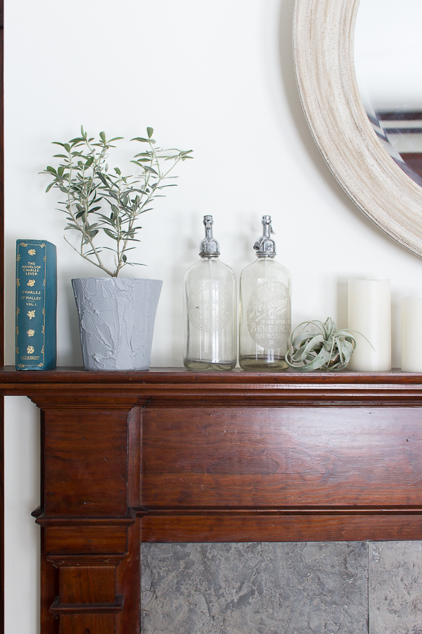 Antique Seltzer Bottles, Airplants and Olive Plants I Finding Silver Pennies