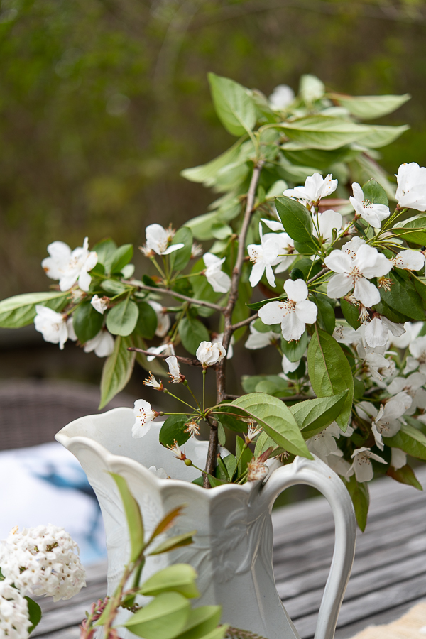 Apple Blossoms in Ironstone - Finding Silver Pennies