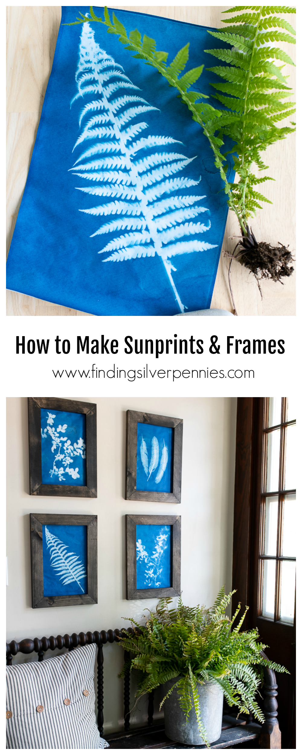 How to Make Sunprints and Rustic Frames - Finding Silver Pennies