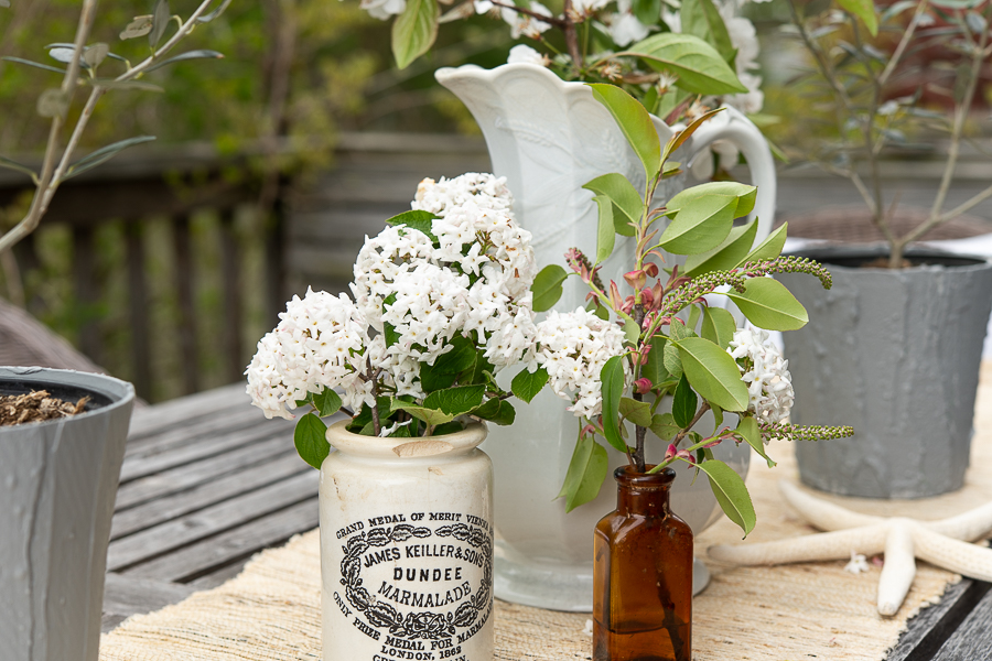 Cut branches and place them in vintage vessels for an improptu gathering on the deck - Finding Silver Pennies