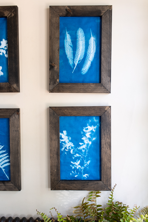 How to Make These Frames and Sunprint Art - Finding Silver Pennies