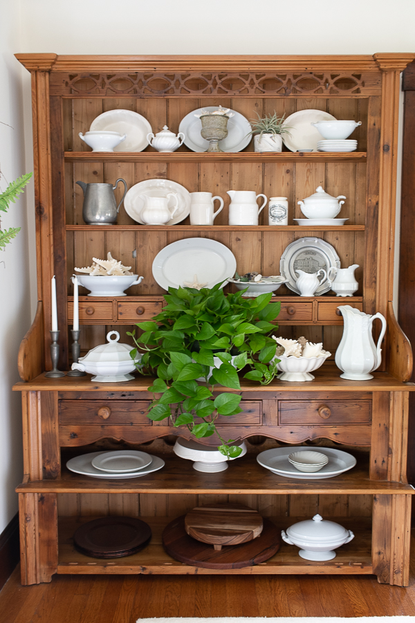 Warm wood antique welsh dresser with ironstone, pewter, shells and a pothos plant - Finding Silver Pennies