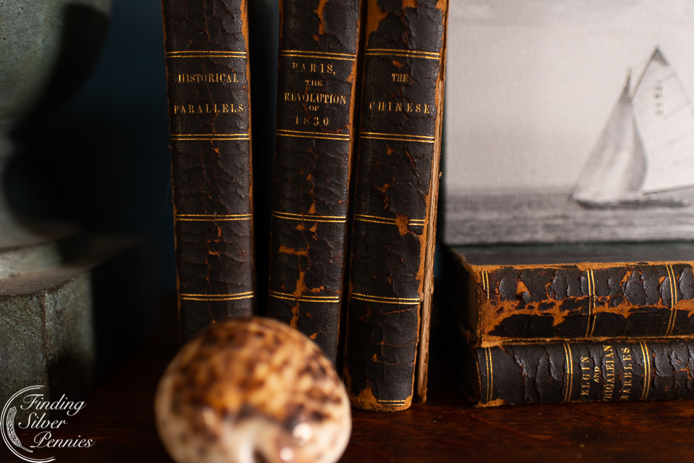 Old Books and treasures from the sea