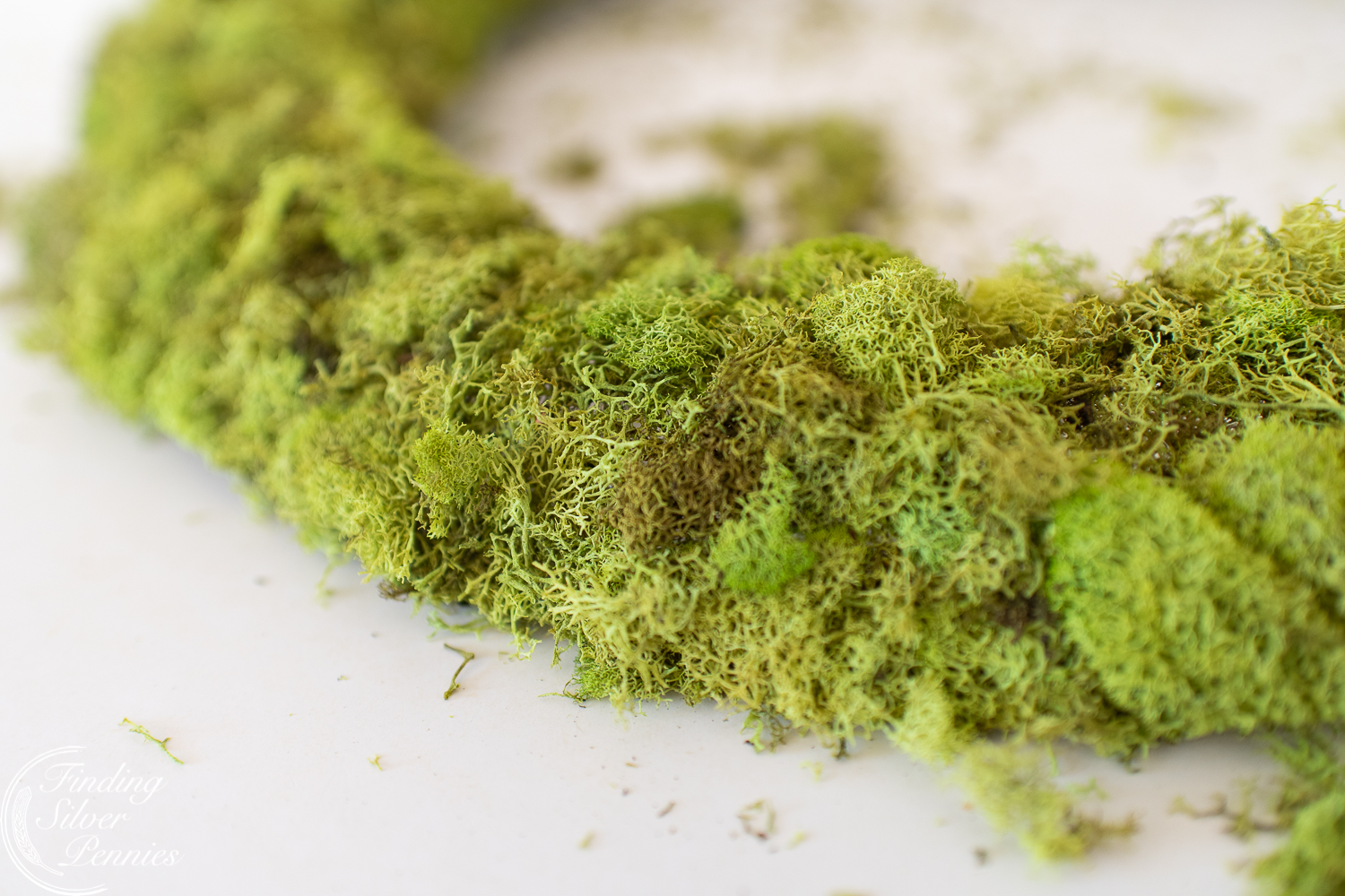 Easy crafts and ways to decorate with moss #moss #crafts #DIYmosswreath #diymossnapkinrings #winterdecorating #hygge #cozyliving