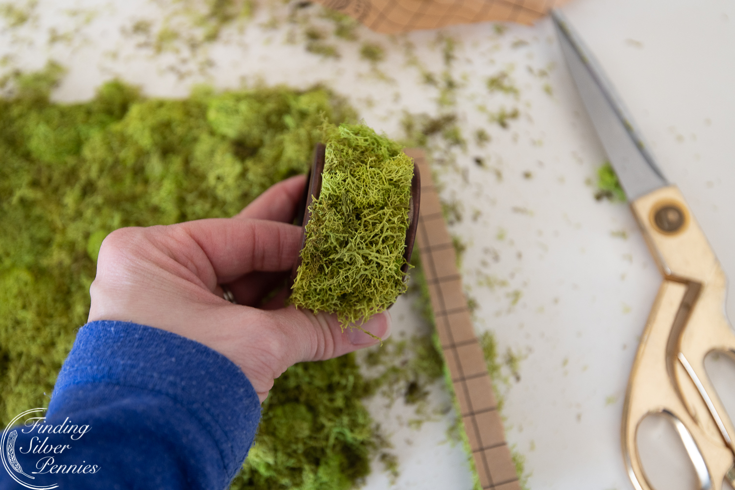 Quick and easy moss napkin rings #moss #crafts #DIYmosswreath #diymossnapkinrings #winterdecorating #hygge #cozyliving