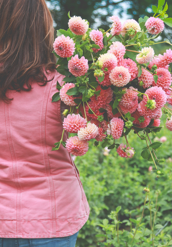 Glorious flowers and what it's like to be a flower farmer #interview #flowerfarm #creativity